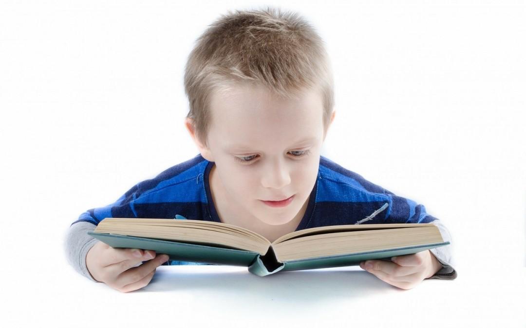 1 de cada 4 escolares tiene problemas de visión y ello puede incidir en el fracaso escolar