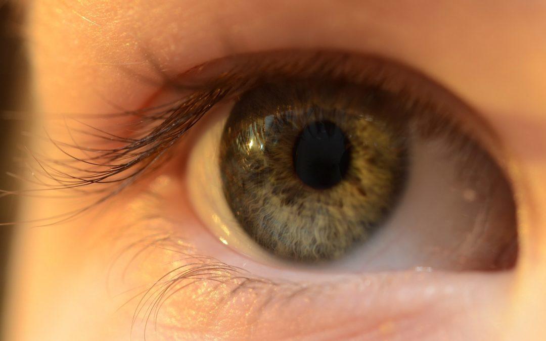 ¿Se pueden usar lentillas para compensar y para el control de miopía?